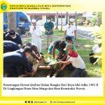 Pemotongan Hewan Qurban  dalam Rangka Hari Raya Idul Adha 1442 H di Lingkungan Dinas Bina Marga dan Bina Konstruksi Provsu